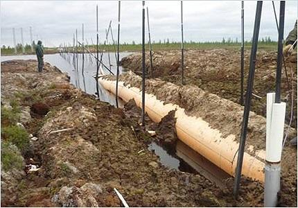 Pipeline settlement caused by permafrost thawing